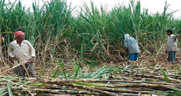 सरकार यह सुनिश्चित करेगी कि गन्ना किसानों को उनकी बकाया धनराशि समय पर मिले।